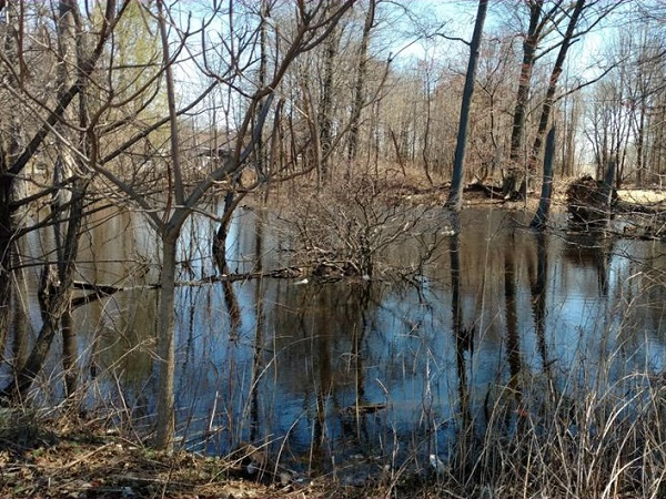 Featured image for the project, Assessing Wetland Capacity to Provide Flood Control Benefits