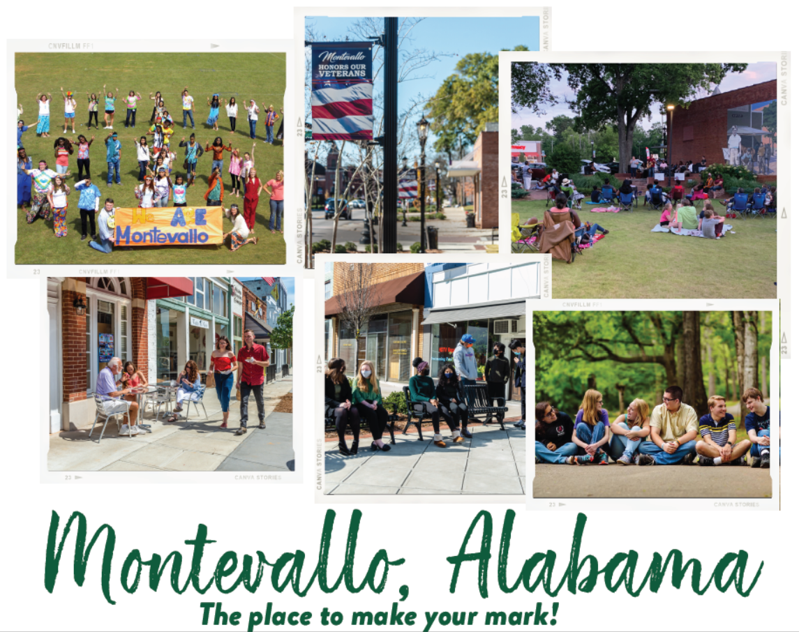 Featured image for the project, Assessing the Quality-of-Life Impacts of Municipal Assets, Resources, and Services in Montevallo, AL